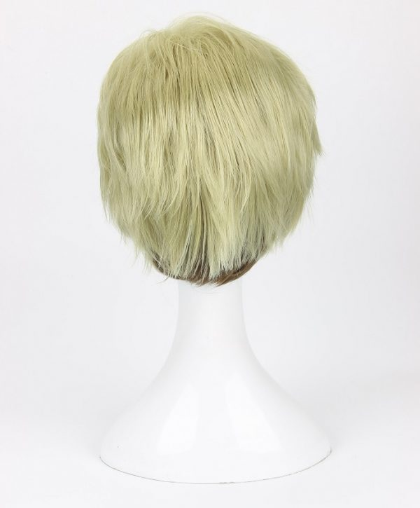 Attack on Titan Erwin Smith Wig Short Blonde Brown Ombre Color Cosplay Wig 3 - Attack On Titan Store